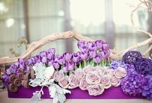 fioletowe aranżacje