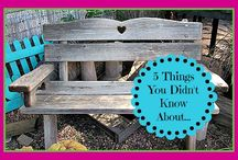 5 Things You Didn't Know About... Blog Series