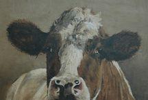 Cows / geschilderde of getekende koeien