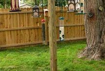Backyard feeders