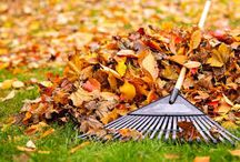 Maintenance Free Lifestyle / At The Villas at Park Place, we take care of your outside maintenance so you can go enjoy doing what you like to do!
