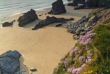 Cornwall / by Diane B