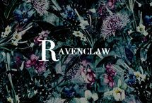 hp: proud ravenclaw |aes / wit beyond measure is man's greatest tresure / hogwarts house / intelligence / sanity