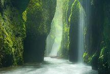 Naturaleza de Verde