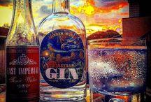Gin Adventures