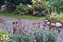 Kertfüvesítés, kertépítés, fű a kertben / Kertépítés, kert tervező programok, a szép gyep titka, négy évszakos fűgondozás