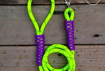 Hot Collars and Leashes / Hot collars and accessories make your one-of-a-kind dog look like a million dollars.