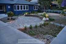 drought friendly yards / by Jennifer McCormick Symes