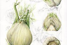 Art Vegetables