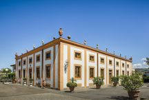 Villa Olmi Firenze Special details / The best of our hotel