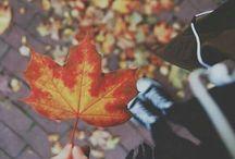 podzim_photography