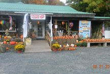 Catskill mountain Country Store