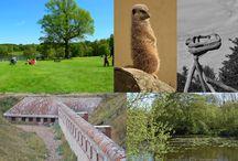 Activities :: West Sussex