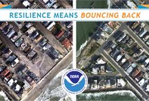 Resilience Means Bouncing Back / Join us as we explore coastal resilience in the face of hazardous events such as marine debris, oil spills, and coastal storms. #NOAAResilience / by NOAA National Ocean Service