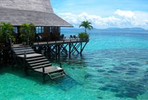 Dive Resort / Dive Resort