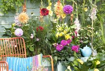 Summer flower bulb gardens / To inspire you and get acquainted with the splendor bulbs give your garden!