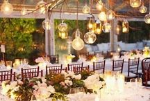 Wedding Receptions / Wow your guests with these ideas.