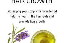 10 essential oils for hair