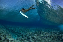 Surfing/ SUP