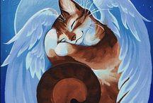 коты и котики