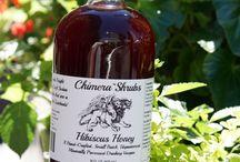 Tropical Shrubs / Drinking vinegar captured in a tropical settings.