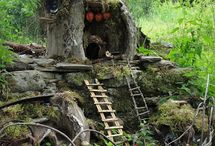 Gnome homes and fairy houses