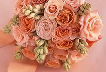 For the LOVE of PEACH!! / All things I LOVE the are PERFECTLY PEACH!! <3 / by Barbara Hainsworth