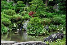 Japon'ya ve güzellikler...