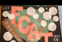 FCAT Ideas / by Dawn Barlow