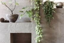 Garden and courtyard / Inspiration for outdoors