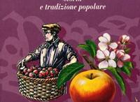 I frutti dimenticati / by Barbara Mattioli