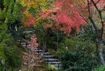 Asian Garden Style