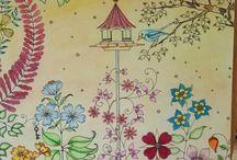 Secret garden / My own colorings
