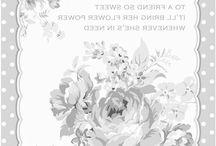 transfer_rózsa