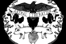 Vegan Animal Liberation