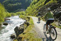 Radfahren in Norwegen / Ein Radurlaub in Norwegen ist optimal für Naturliebhaber. Dank der endlosen Sommertage bleiben Sie länger aktiv und genießen die idyllische Landschaft auf guten Straßen mit wenig Verkehr. Oder machen Sie Ihren norwegischen Radurlaub zu einem Abenteuer auf dem Mountainbike. Fahren Sie auf Singletrails zu Berggipfeln und erobern Sie unwegsames Gelände.