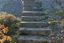 trappor trädgård