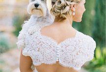 WEDDING DOGS / Dog Flower Girls   Dog Ring Bearers