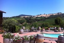 travel: wine country