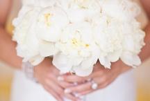 Wedding / by Zoie Pike