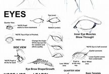 Head - Eyes, nose, etc