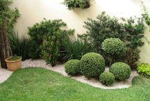 Jardim externo / Jardim no quintal