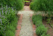 Garden vege