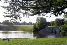 blenhein palace