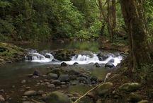 River / Stream