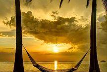 Caribbean / Travel / by Sandy Metz