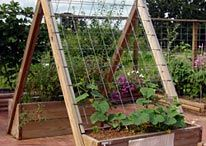 Garden Ideas/ Garden DIY / by Kathy Riley
