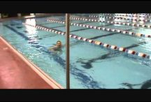 Swimming / by Lesley Trussler