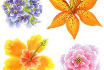 návody kvety