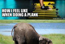 Funny! / by Carissa Brokmeyer